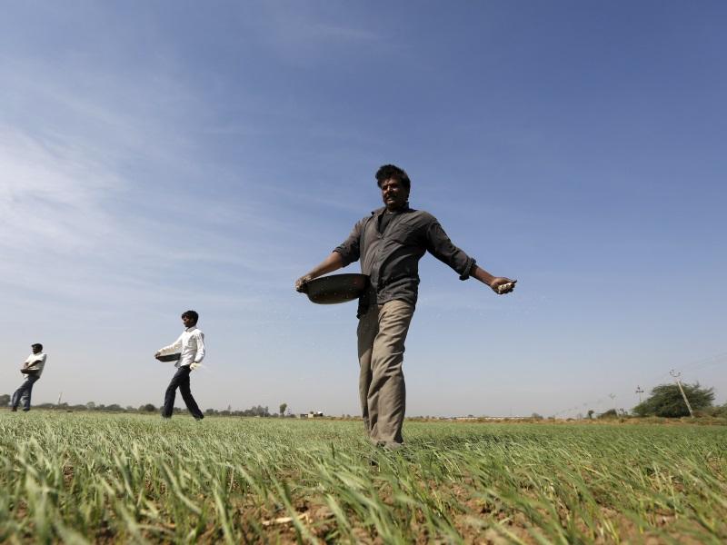 CROPP: l'app per gli agricoltori