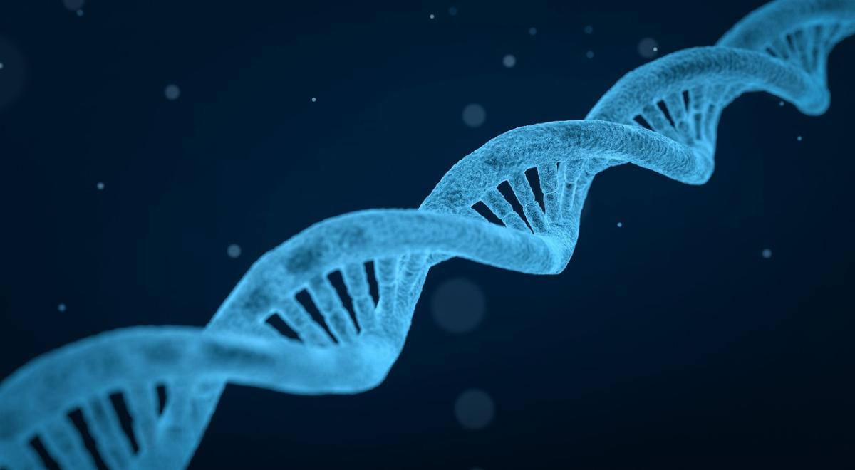 Che cos'è il DNA ricombinante e quali sono le principali applicazioni